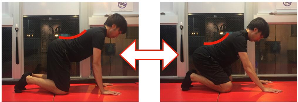 腰の反りを維持しながらのエクササイズ
